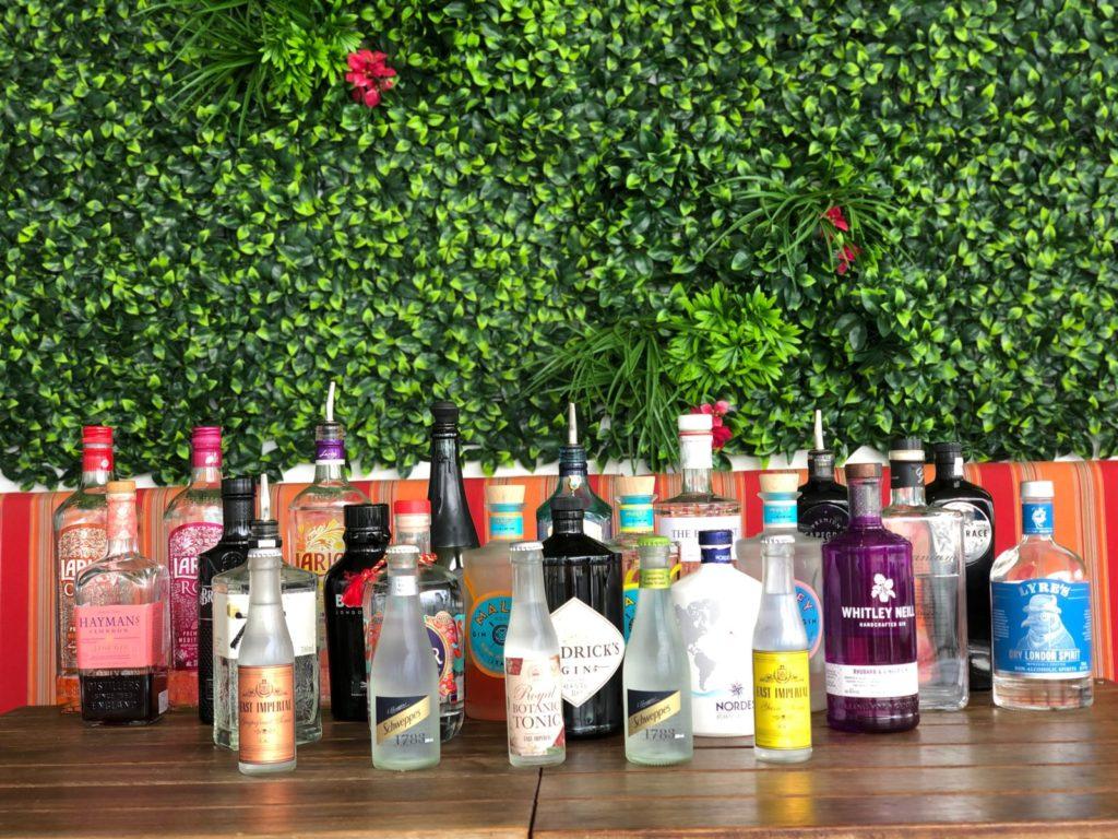 Gin Tonic Gin & Tonic Gin Collection